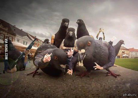 скачать торрент банда - фото 7