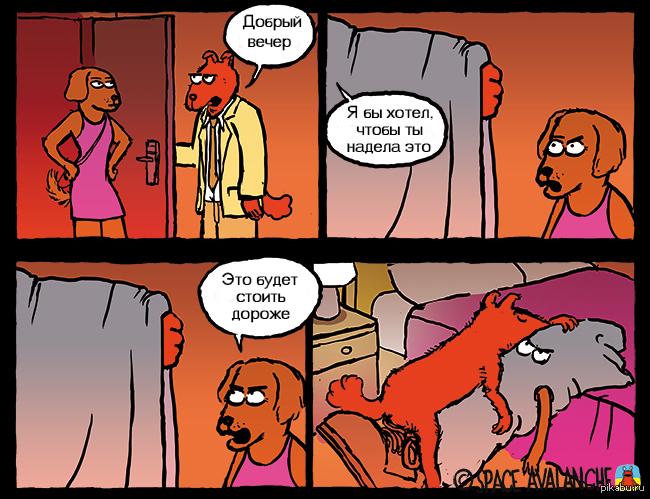 Собаки...Такие собаки...