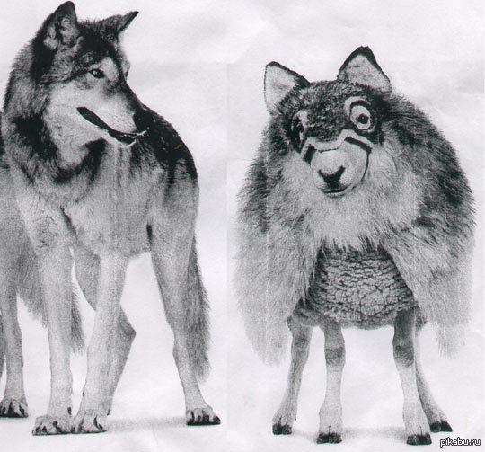 Картинки по запросу баран в волчьей шкуре