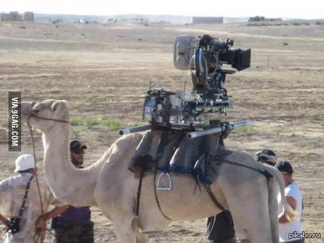 Google street view в Египте Стырено с 9GAG