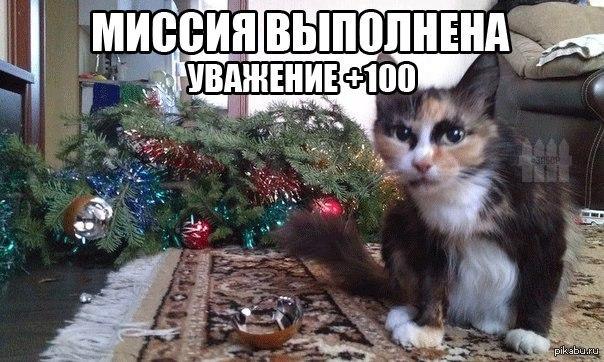 Коты роняют елки фото