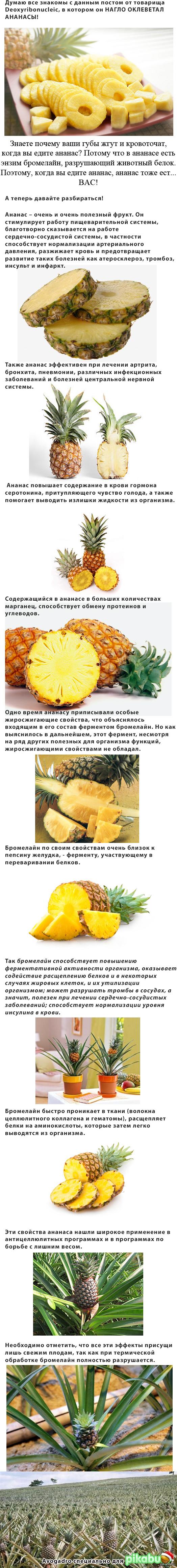 Вкус спермы и ананасы