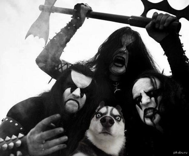 Советы Блэк металистам картинки