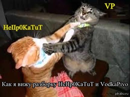 Как я вижу разборку HeIIp0KaTuT и vodkapivo Серьезно, может хватит устраивать срач безповода?Пусть и дальше сидит в своей клубничке.  P.s.хотел добавить гифку, не грузится