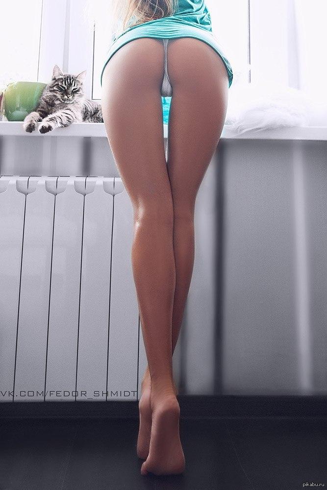 Длинные ноги и попка