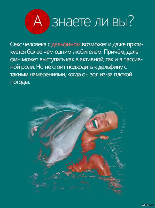 Секс дельфина и людей