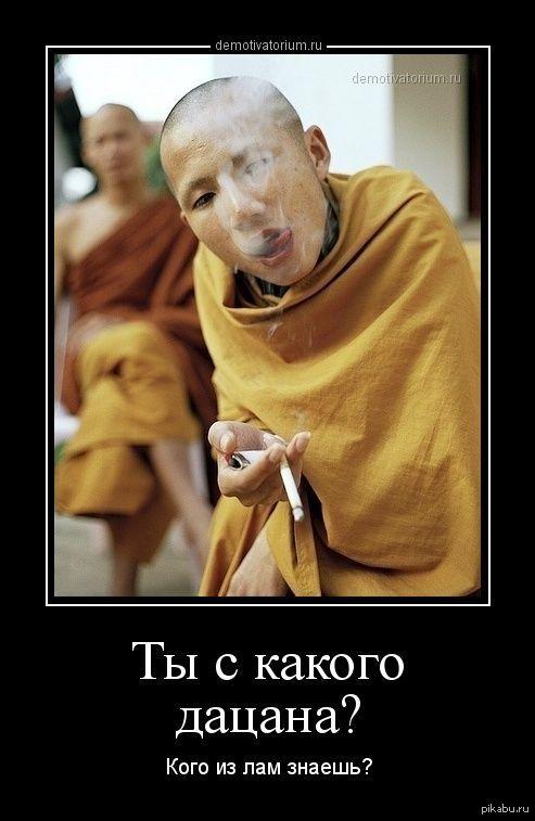 Дзен буддизм смешные картинки, поздравительные открытки