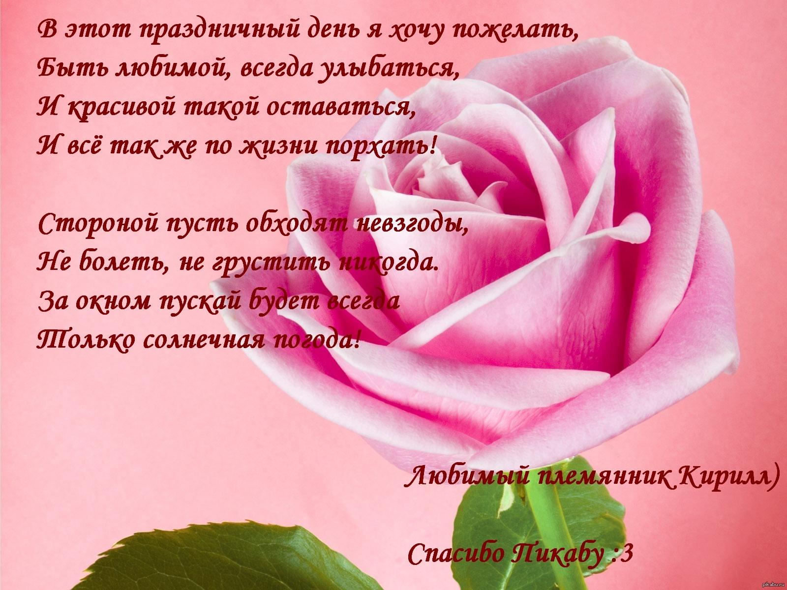 Лаванда заказ цветов