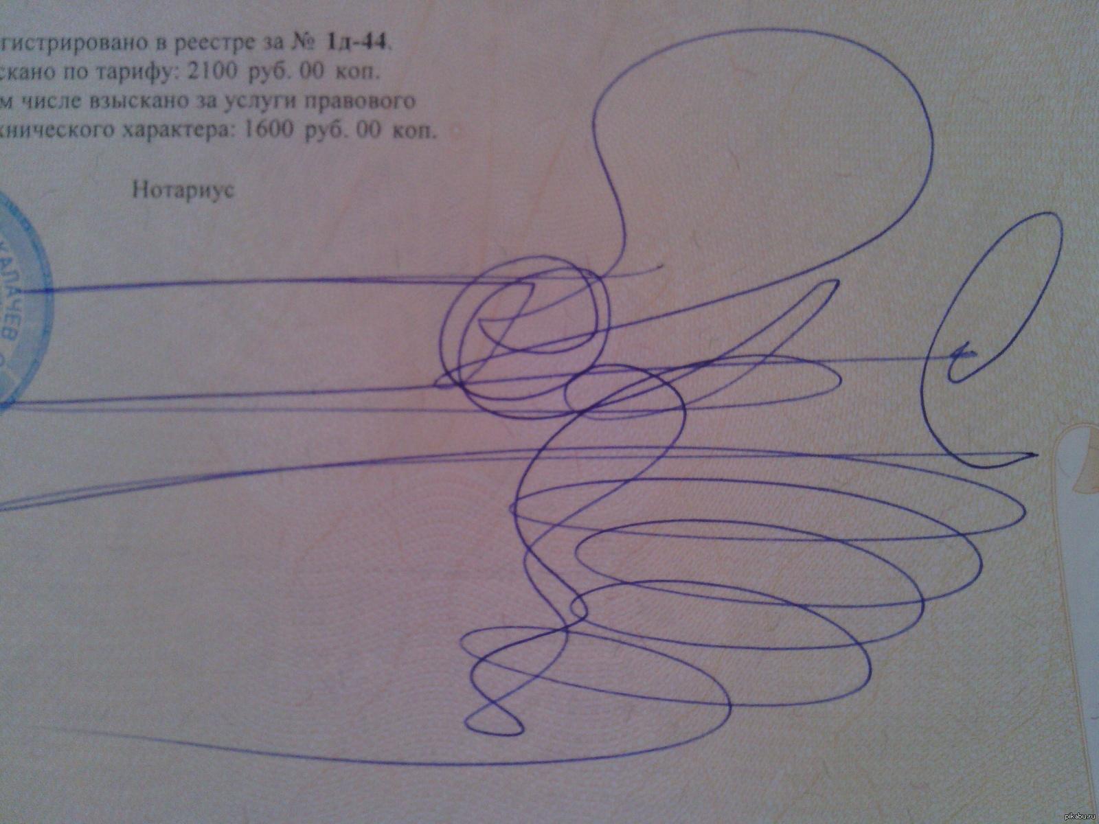 Смешные картинки придумай подпись