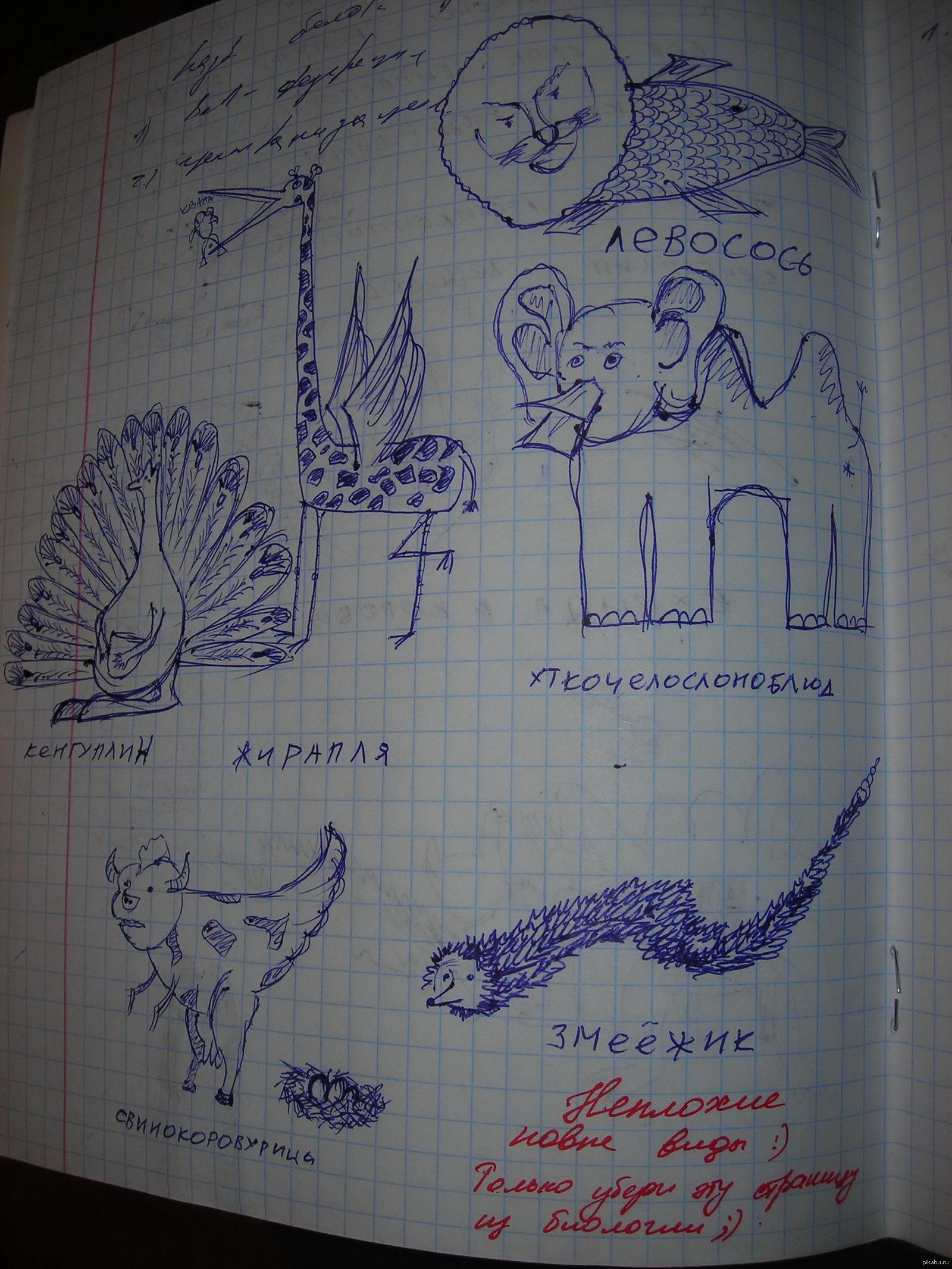 рисунки когда нечего делать на уроке