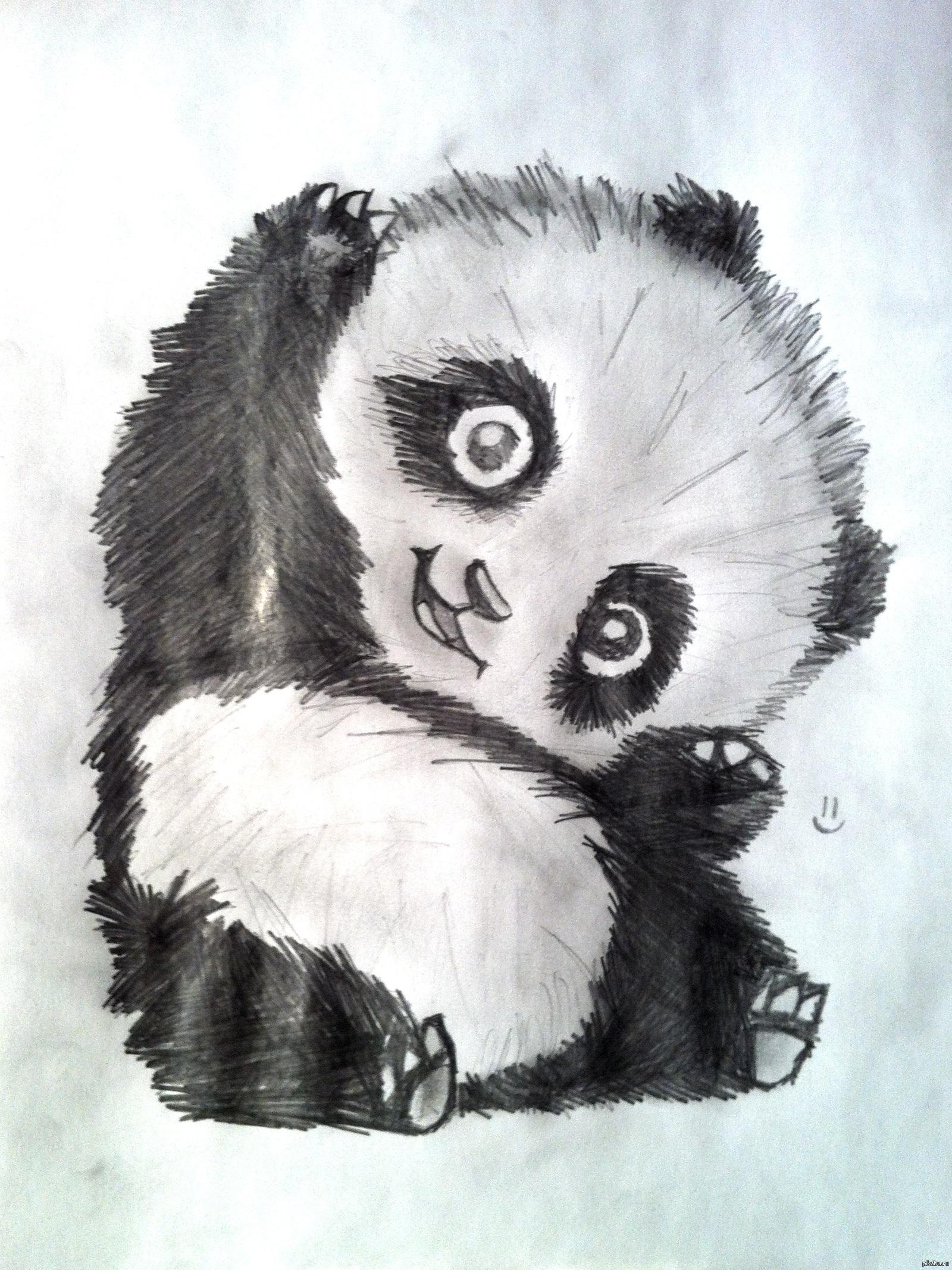 Прикольные картинки для срисовки панд, дню свадьбы