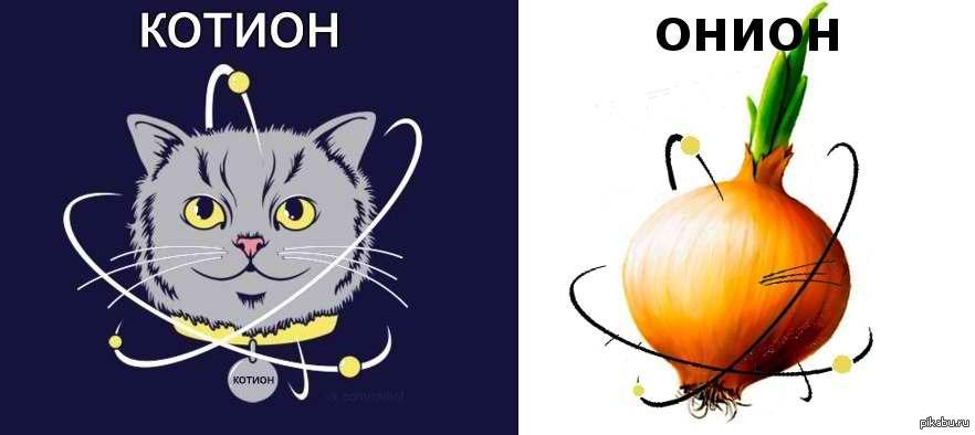 Картинки надписью, приколы по химии картинки