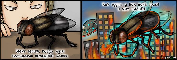 Картинки прикольные про муху