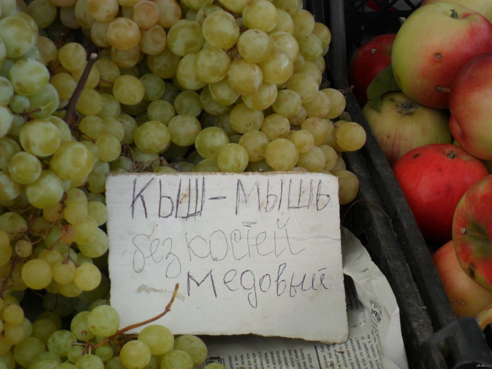 сегодняшний прикольные картинки про виноград монтажу фотообоев двери