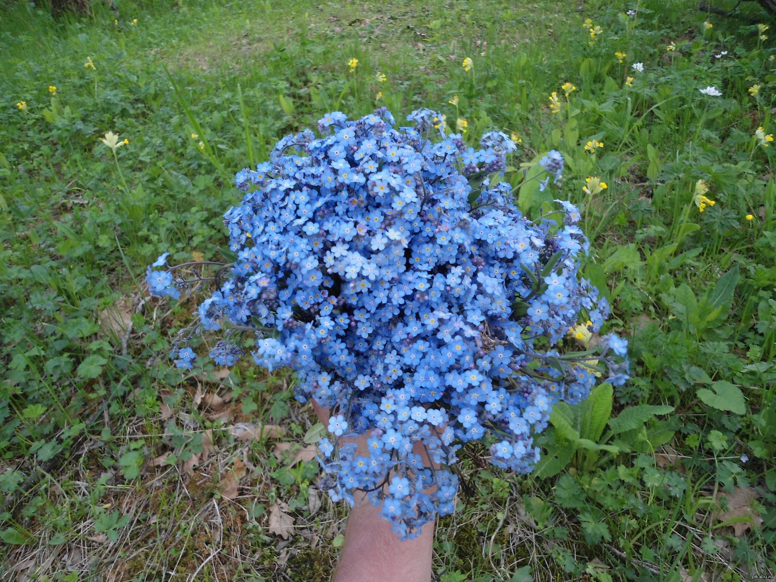 Сделать резинки цветы из резинок