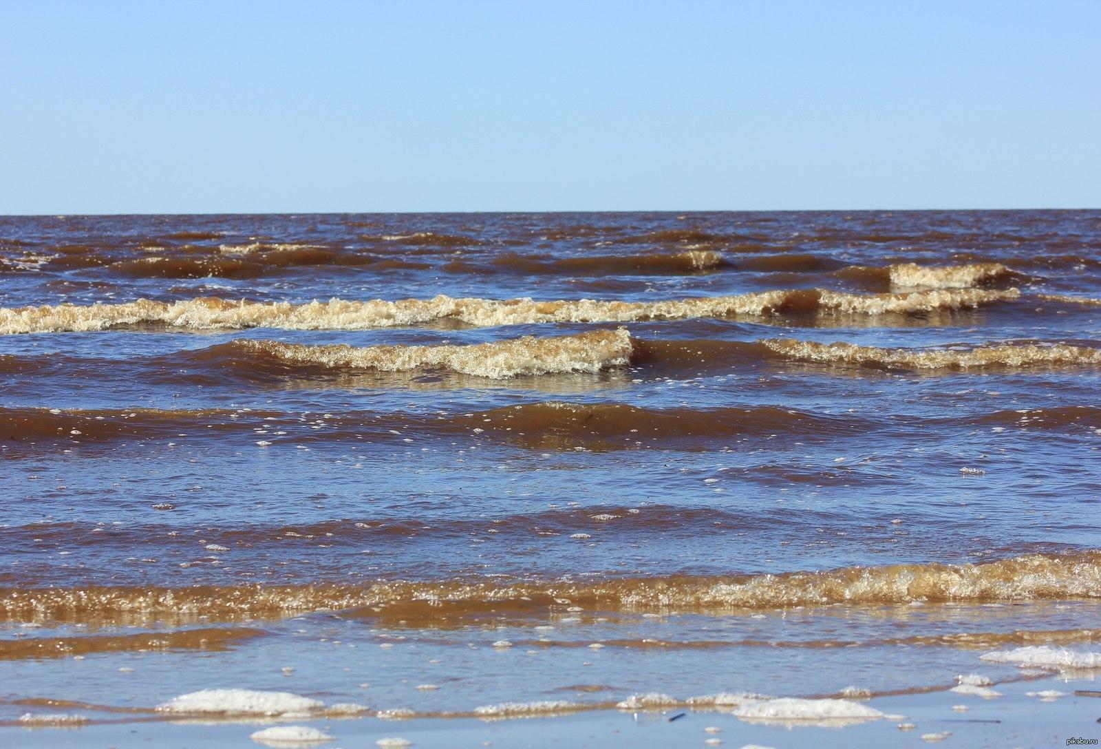 белое море пляж фото нас