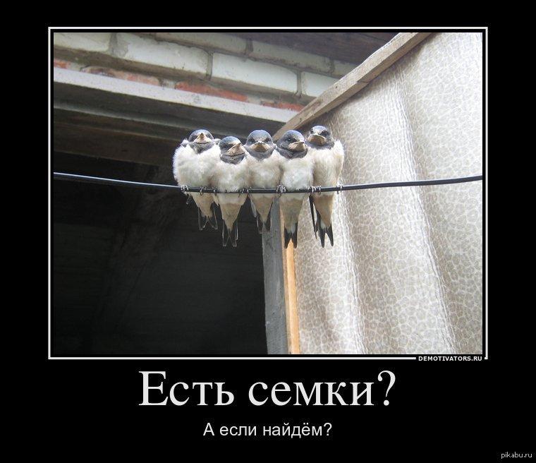 В украинской власти нет политиков с антипольскими настроениями, - МИД о заявлениях руководства Польши - Цензор.НЕТ 7468