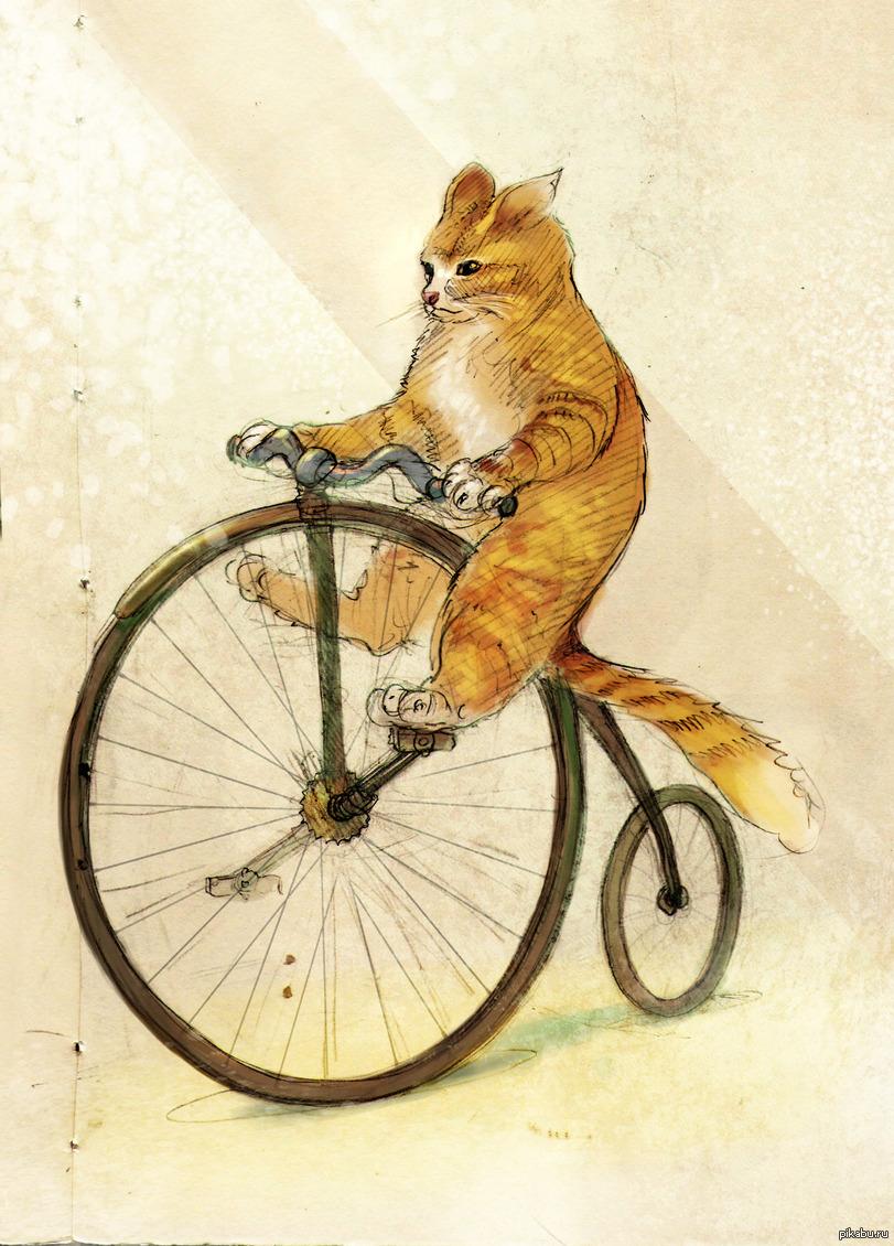 Днем рождения, картинка велосипеда прикольная