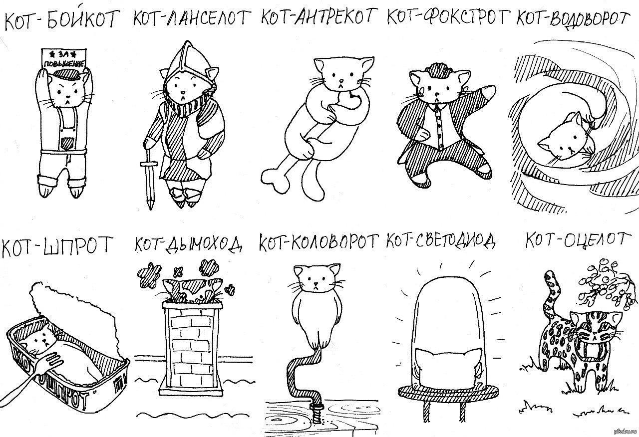 Картинки котик компотик
