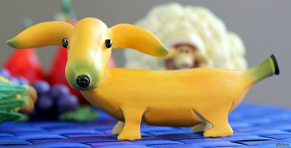 картинки собака из банана далеко