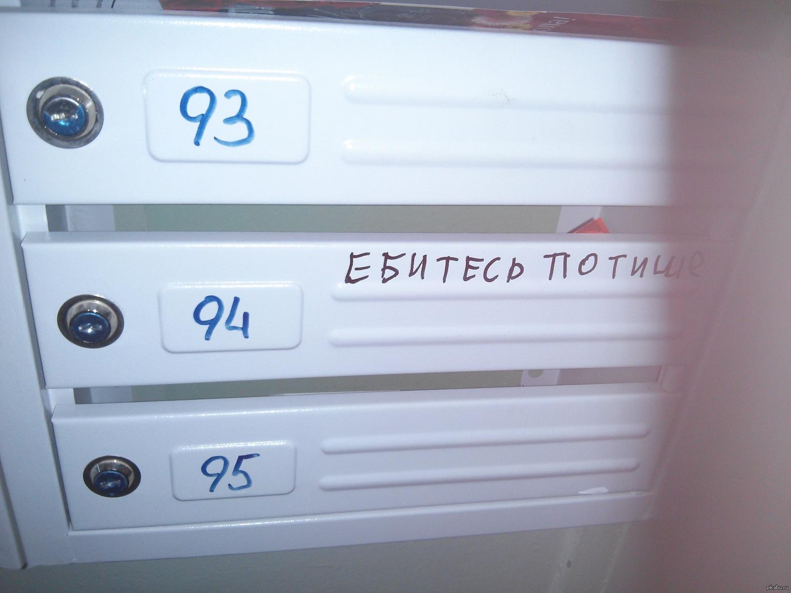 skachat-nayti-vihod-ebites-potishe
