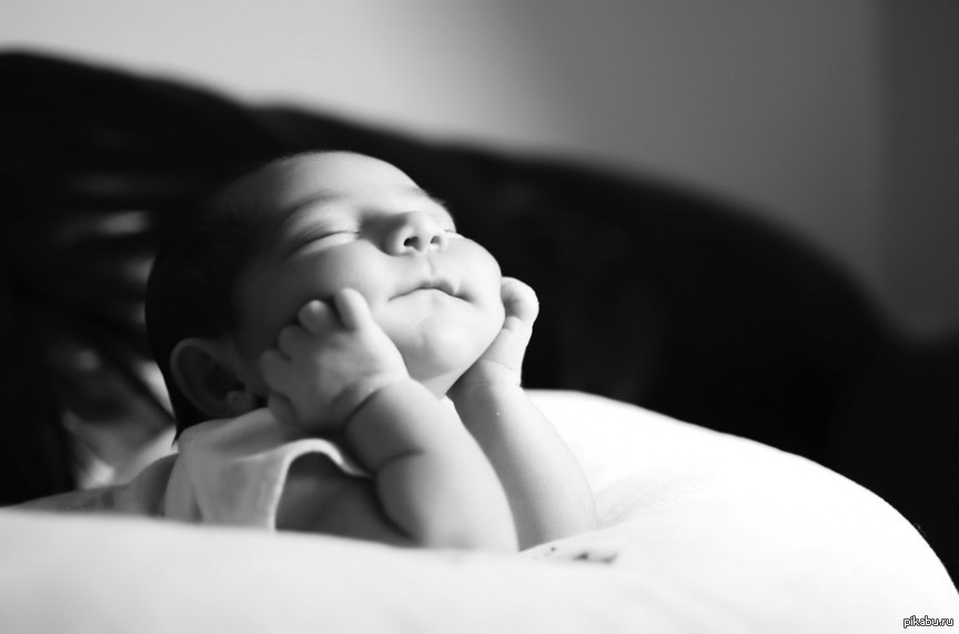 фото с надписью малыш проснулся и покорил весь мир модные джемпера