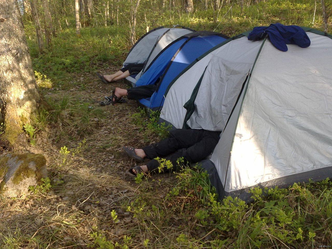 Веселые картинки с палатками