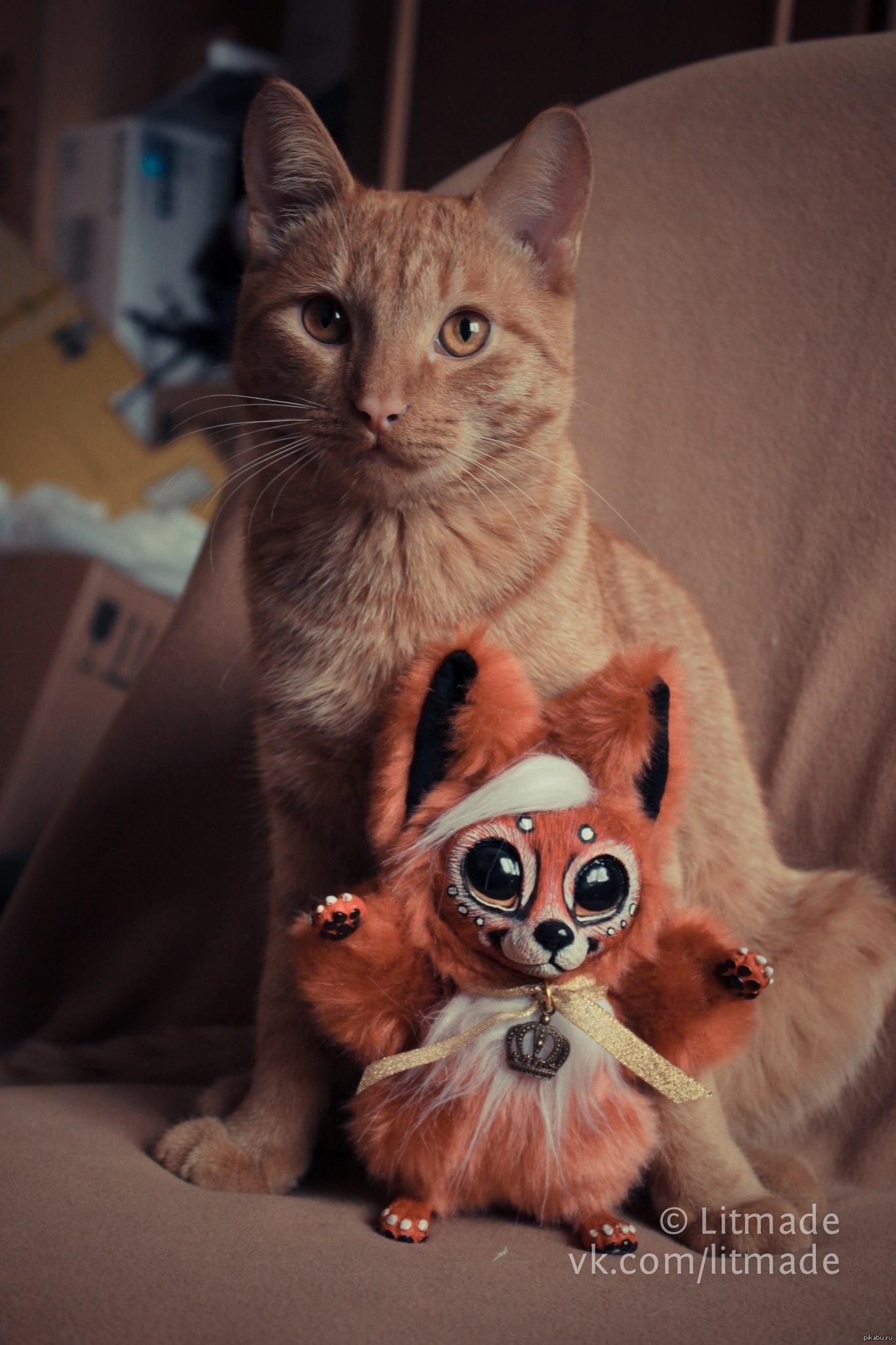 Рыжий кот и лис