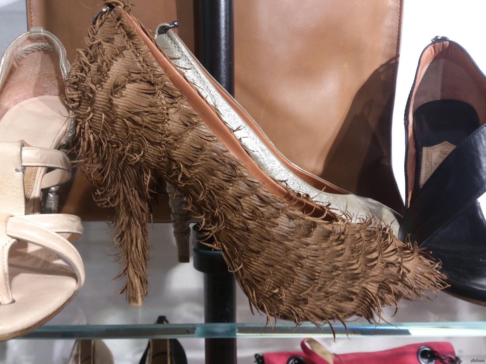 Прикольные картинки одежды и обуви