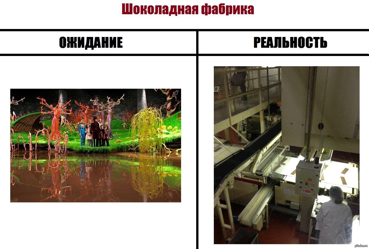 Демотиватор и шоколадная фабрика цветёт эшшольция