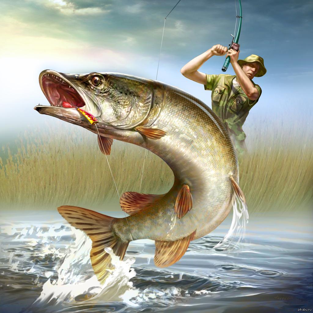 Открытка день рождения мужчине рыбаку, гаремом