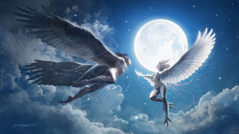 Картинка лечу на крыльях любви
