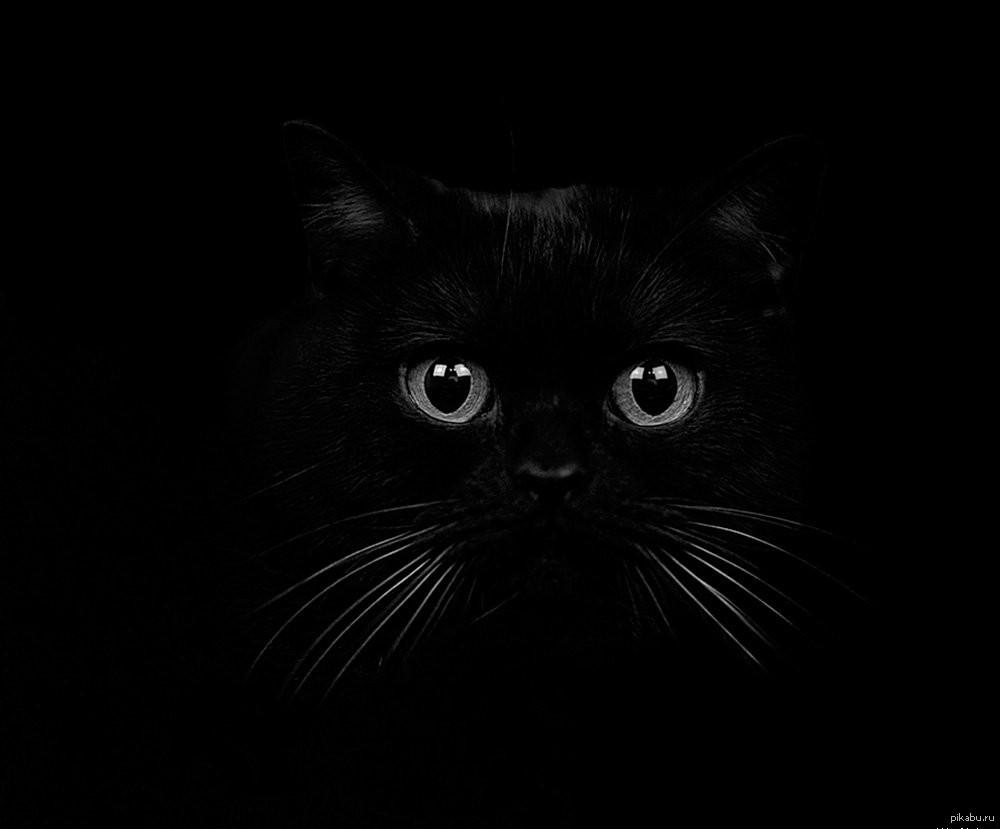 Прикольные картинки темнота