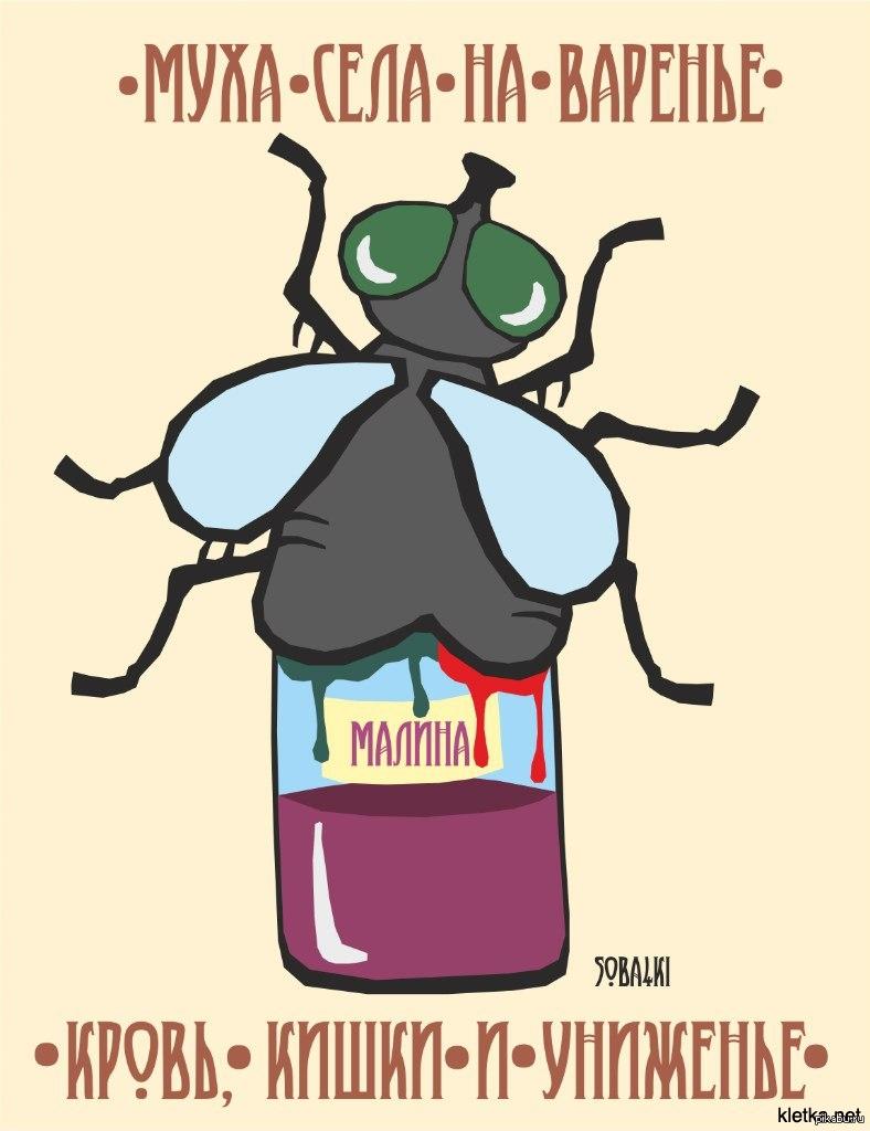 Картинки муха прикольные, пары красивые