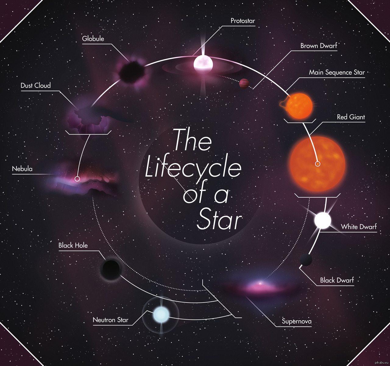 life cycle of a star essay Life cycle of stars - galaxy essay example krishan kumar astronomy s - life cycle of stars introduction cabral life cycle of stars our sun is a perfect example of a star, and there is an incredible amount of stars in the universe.